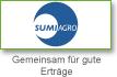 partner/sumi.png