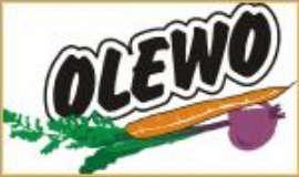 www.olewo.de