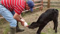 farming-935267_640.png