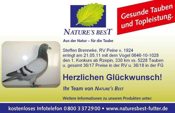 Taube_NB_1.jpg