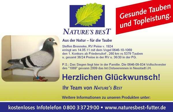 Taube_NB_2.jpg