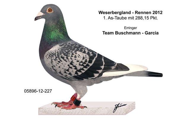 Weserbergland-Rennen_2012_1.As-Tb.jpg