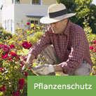 Pflanzenschutz.jpg