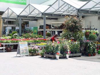 Raiffeisen-Waren-Genossenschaft Rheinland eG Raiffeisen-Markt